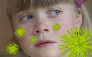Schutz vor Krankheitserregern – Nasenatmung und Mundatmung im Vergleich