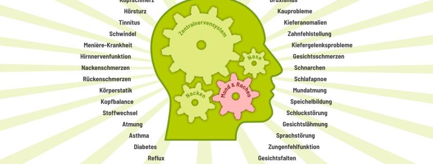 FACEFORMER® Therapie – Wirkt Symptomen an der Ursache entgegen